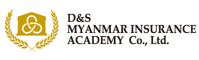 d&s myanmar insurance academy